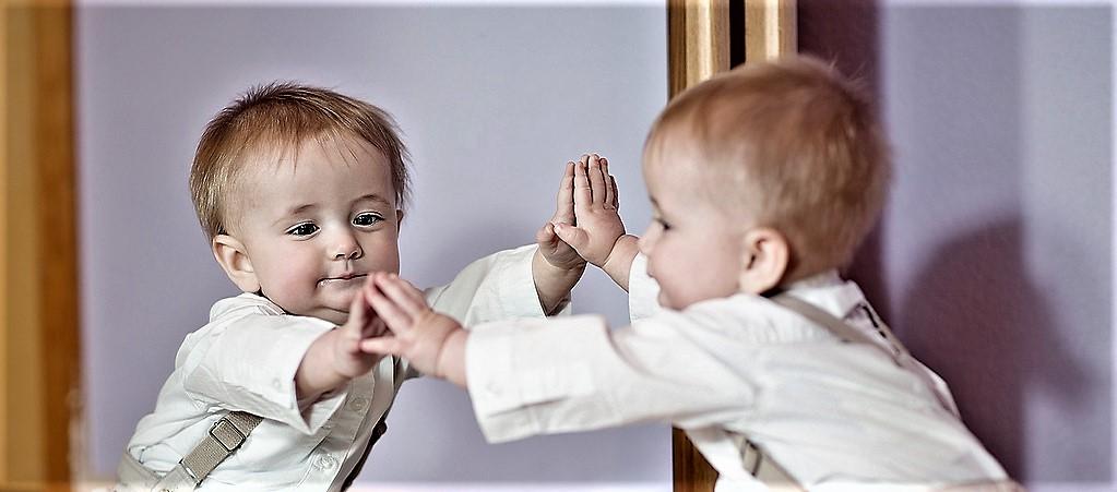 Изображение за статията Стадият на огледалото и възпитанието